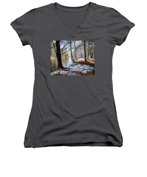 Winter's Remains Women's V-Neck T-Shirt (Junior Cut) by Betsy Zimmerli