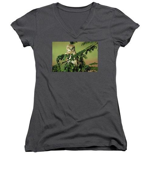 Wise Watcher Women's V-Neck T-Shirt (Junior Cut) by Sue Cullumber