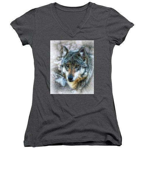Wolf Gaze Women's V-Neck (Athletic Fit)
