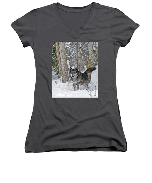 Wolf In Trees Women's V-Neck