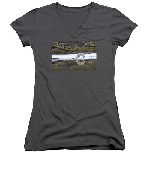 Wolflection Women's V-Neck T-Shirt (Junior Cut) by Steve Stuller