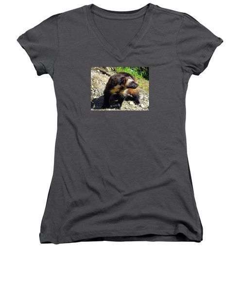 Women's V-Neck T-Shirt (Junior Cut) featuring the photograph Wolverine Wilderness by Kathy Kelly