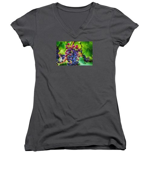 Women's V-Neck T-Shirt (Junior Cut) featuring the photograph Wonderful Colors by Lynn Hopwood