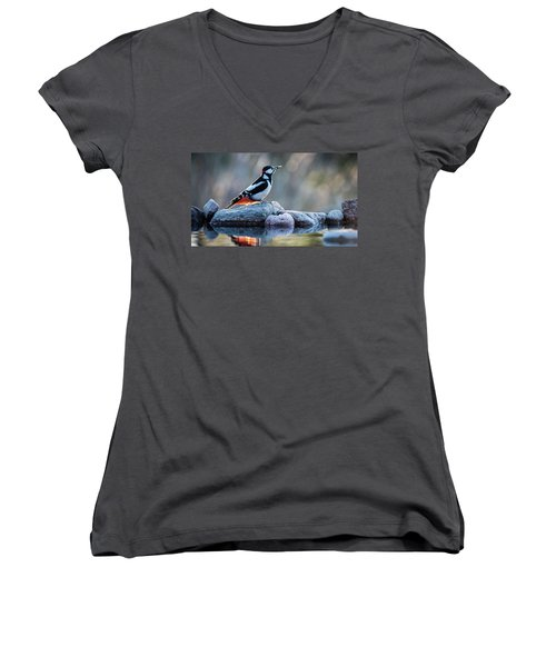 Woodpecker In Backlight Women's V-Neck T-Shirt