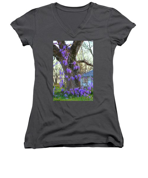 Wysteria Tree Women's V-Neck T-Shirt