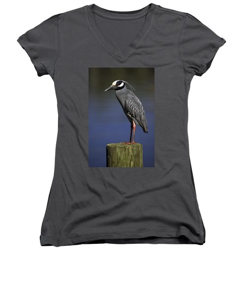 Women's V-Neck T-Shirt (Junior Cut) featuring the photograph Yellow-crowned Night Heron by Sally Weigand