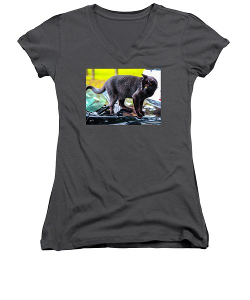 Women's V-Neck T-Shirt (Junior Cut) featuring the photograph Yellow Eyed Cat by Madeline Ellis