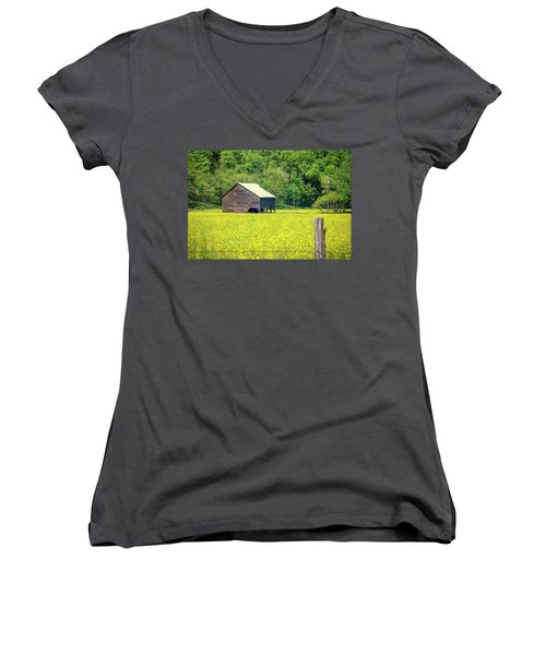 Yellow Field Rustic Shed Women's V-Neck