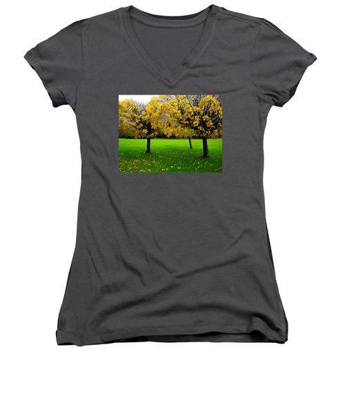 Yellow Leaves At Muckross Gardens Killarney Women's V-Neck