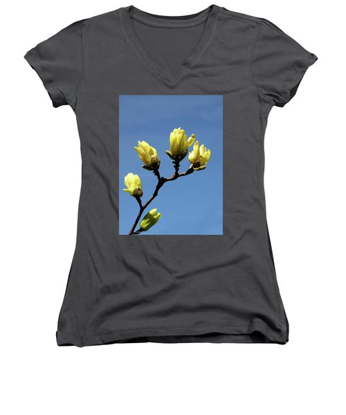 Yellow Magnolia Women's V-Neck