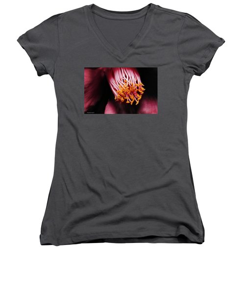 Yellow Pollen 01 Women's V-Neck T-Shirt (Junior Cut) by Kevin Chippindall