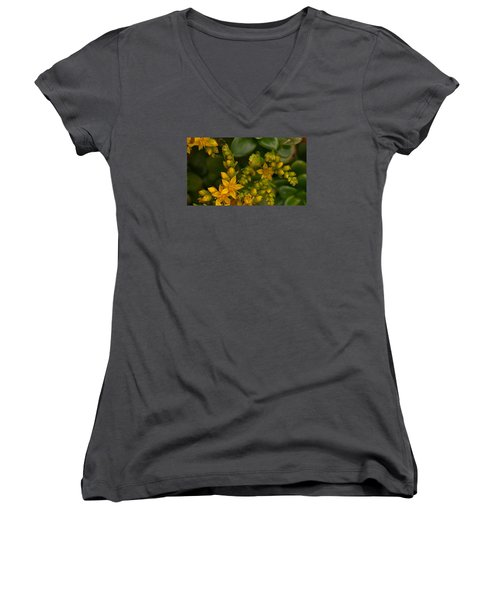 Yellow Sedum Women's V-Neck T-Shirt