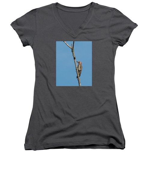 Yellow Shafted Flicker Women's V-Neck T-Shirt