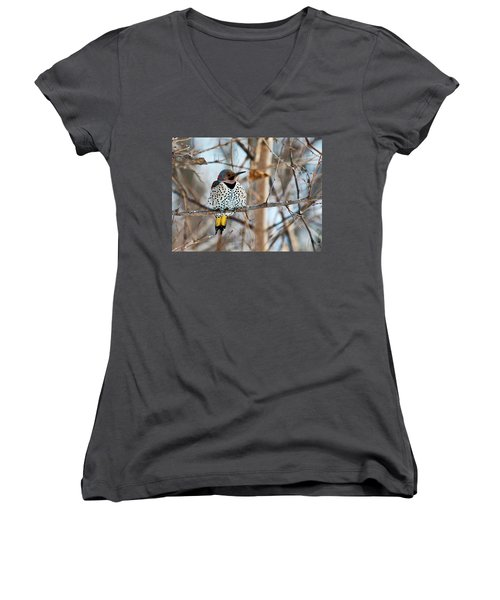 Yellow-shafted Northern Flicker Staying Warm Women's V-Neck (Athletic Fit)