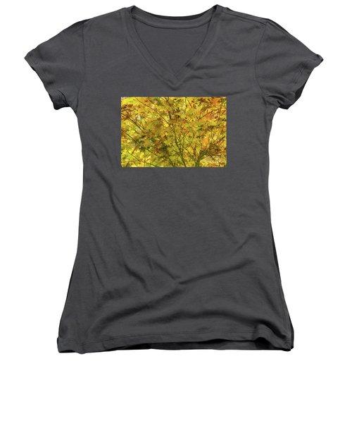 Yellow Spring Women's V-Neck T-Shirt (Junior Cut) by Iris Greenwell