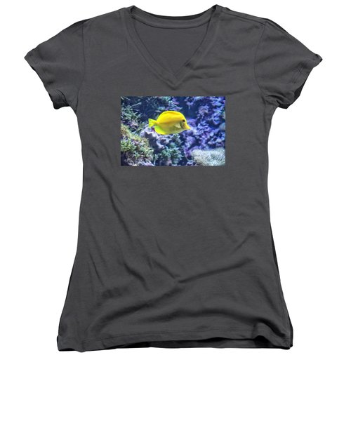 Yellow Tang Women's V-Neck T-Shirt