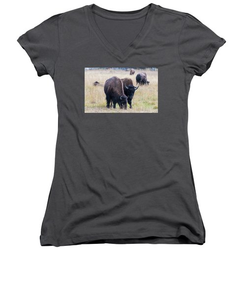 Yellowstone Bison Women's V-Neck