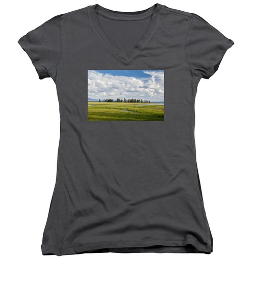Yellowstone Meadow Women's V-Neck (Athletic Fit)