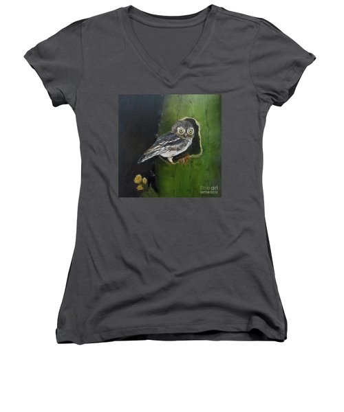 Women's V-Neck T-Shirt (Junior Cut) featuring the painting You Caught Me by Roseann Gilmore