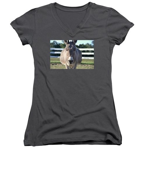 You Wanna Pin What Where? Women's V-Neck