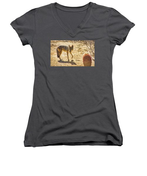 Young Coyote And Cactus Women's V-Neck