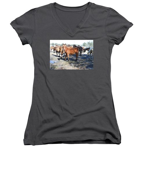 Young Cracker Horses Women's V-Neck T-Shirt (Junior Cut) by Kay Gilley
