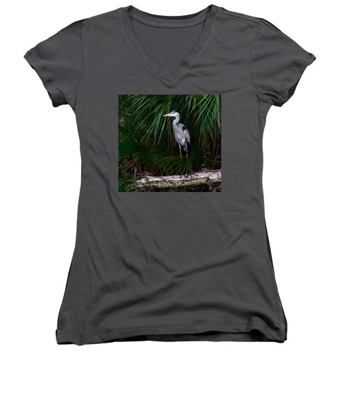 Young Great Blue Heron Women's V-Neck T-Shirt