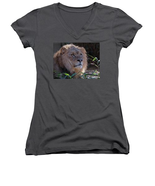 Young Lion King Women's V-Neck T-Shirt