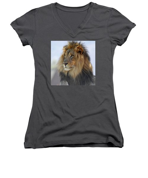 Young Male Lion Women's V-Neck