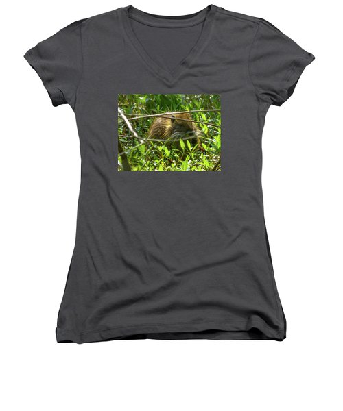 Young Nutria In Love Women's V-Neck T-Shirt (Junior Cut) by Kimo Fernandez