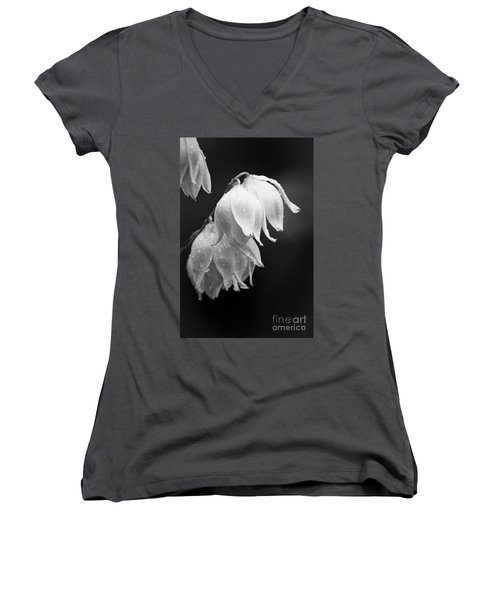 Yucca After The Rain Women's V-Neck (Athletic Fit)