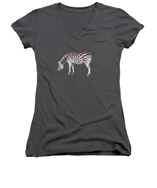 Zebra Women's V-Neck T-Shirt (Junior Cut) by Pamela Walton