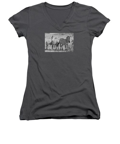 Women's V-Neck T-Shirt (Junior Cut) featuring the photograph Zebras In Thought by Pravine Chester