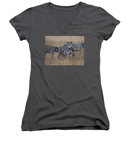 Zebras Walking In The Grass 2 Women's V-Neck T-Shirt (Junior Cut) by Exploramum Exploramum