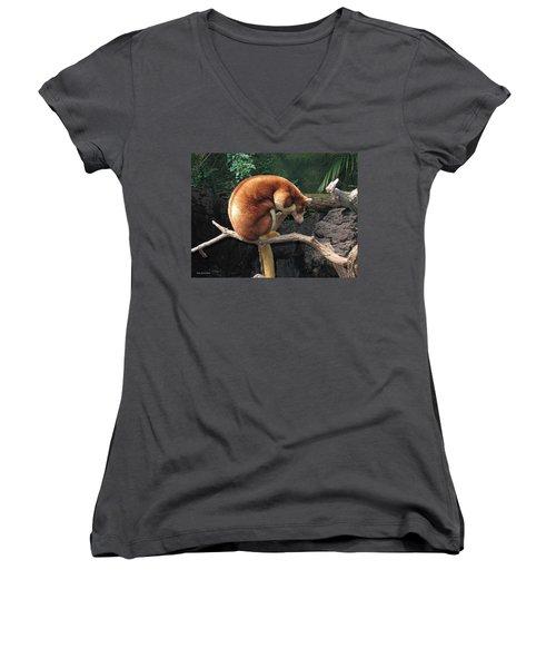 Zoo Animal Women's V-Neck T-Shirt
