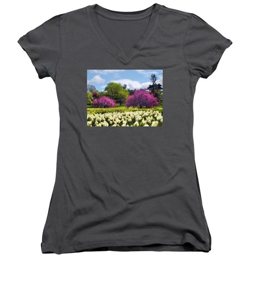 Spring Fever Women's V-Neck