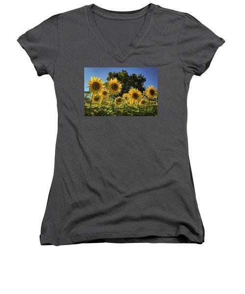 Sunlit Sunflowers Women's V-Neck