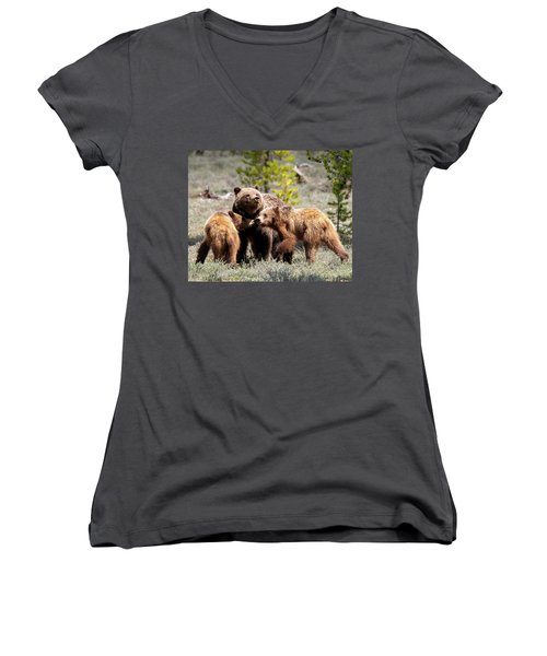 399 And Cubs Women's V-Neck