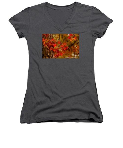 A Branch Of Autumn Women's V-Neck