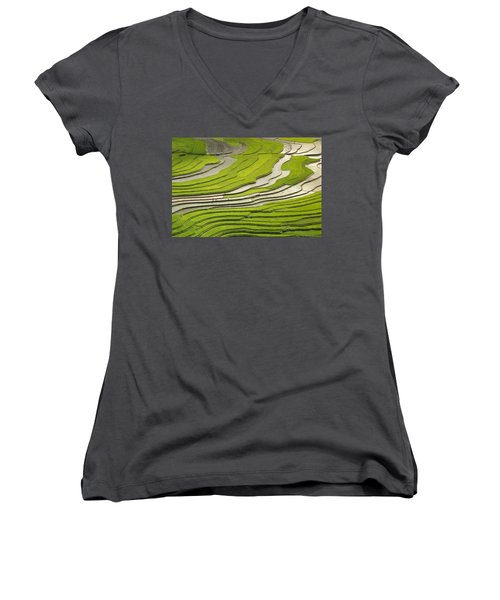 Asian Rice Field Women's V-Neck