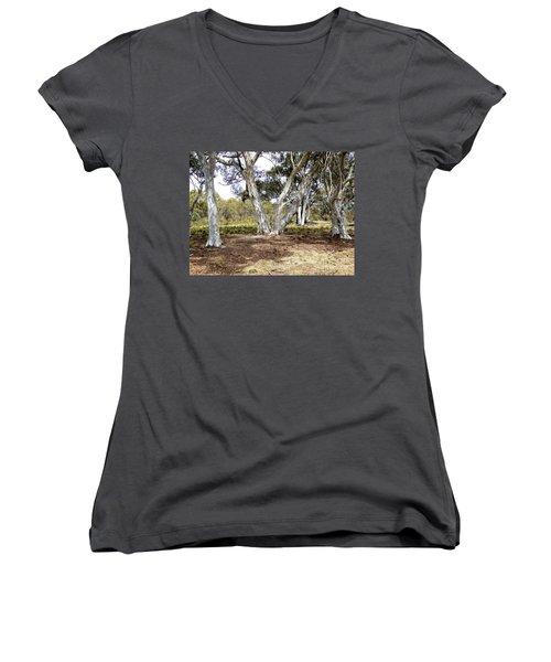 Australian Bush Scene Women's V-Neck