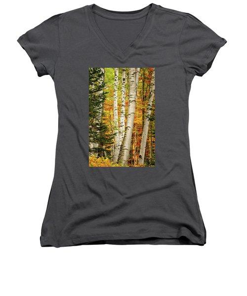 Autumn Birch Women's V-Neck