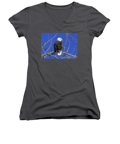 Bald Eagle And Blue Sky Women's V-Neck