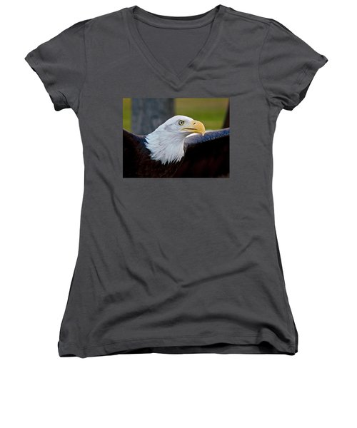 Women's V-Neck featuring the photograph Bald Eagle by Dan Miller