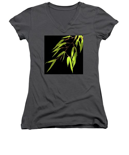 Bamboo Leaves 0580a Women's V-Neck