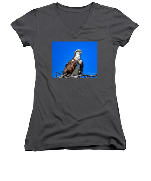 Beautiful Osprey Women's V-Neck