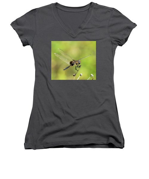 Black Saddlebags Dragonfly Women's V-Neck
