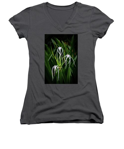Blooming Poetry 4 Women's V-Neck