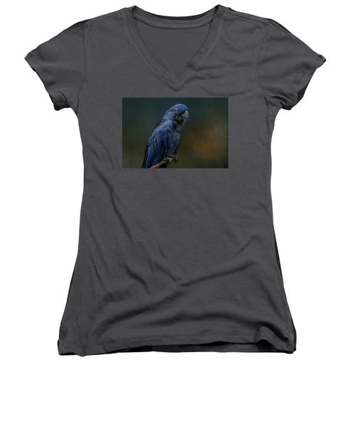 Blue Beauty Women's V-Neck