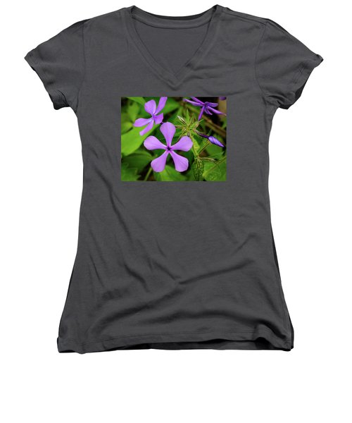 Blue Phlox Women's V-Neck